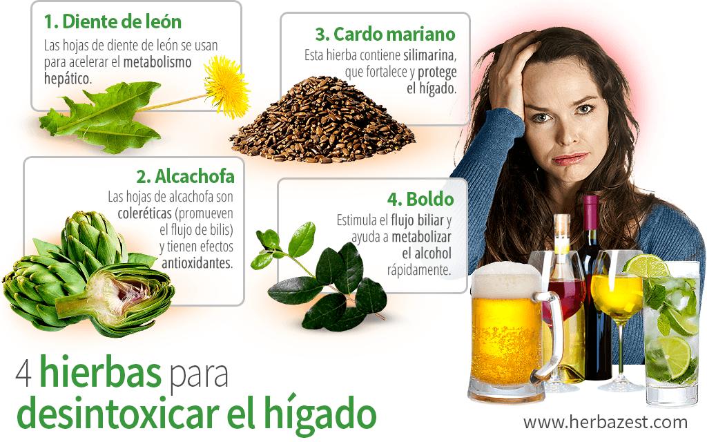 4 hierbas para desintoxicar el hígado