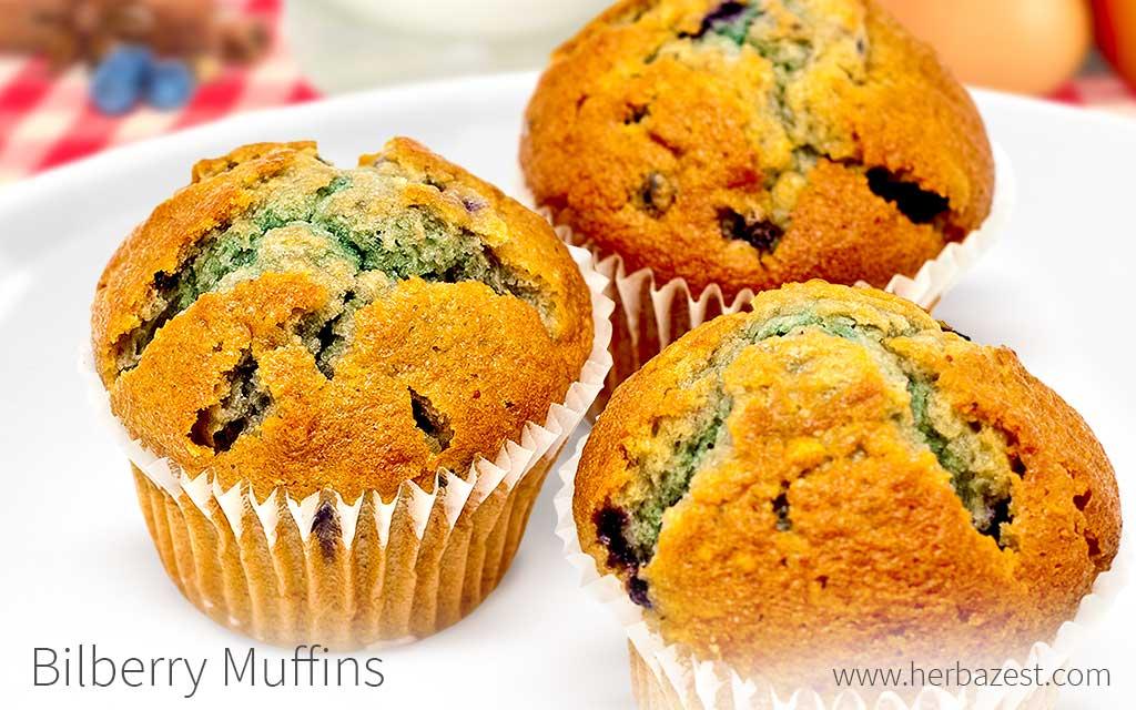 Bilberry Muffins