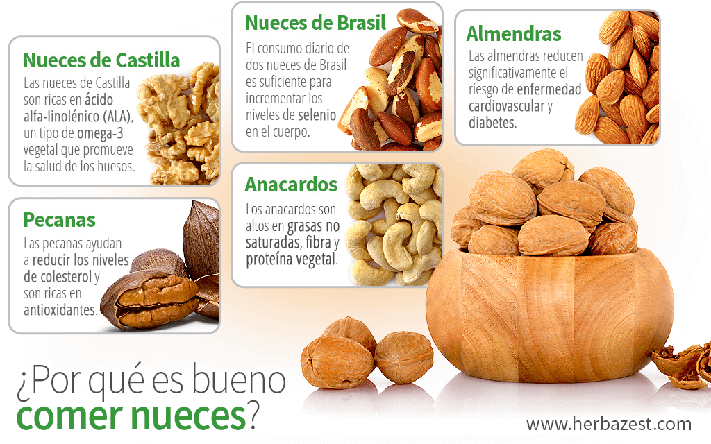 ¿Por qué es bueno comer nueces?
