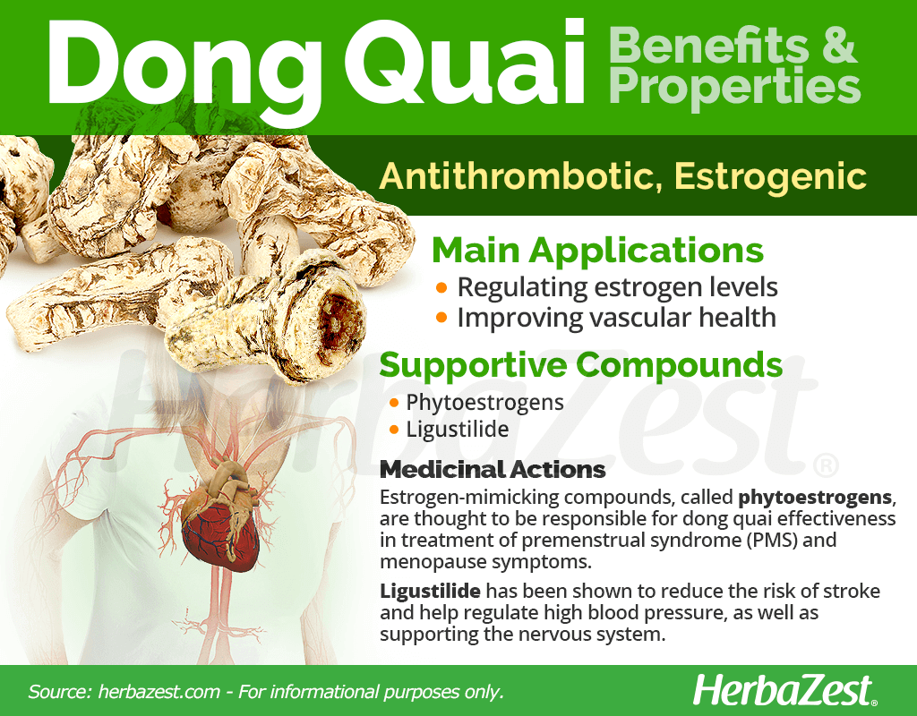 Dong Quai Benefits and Properties
