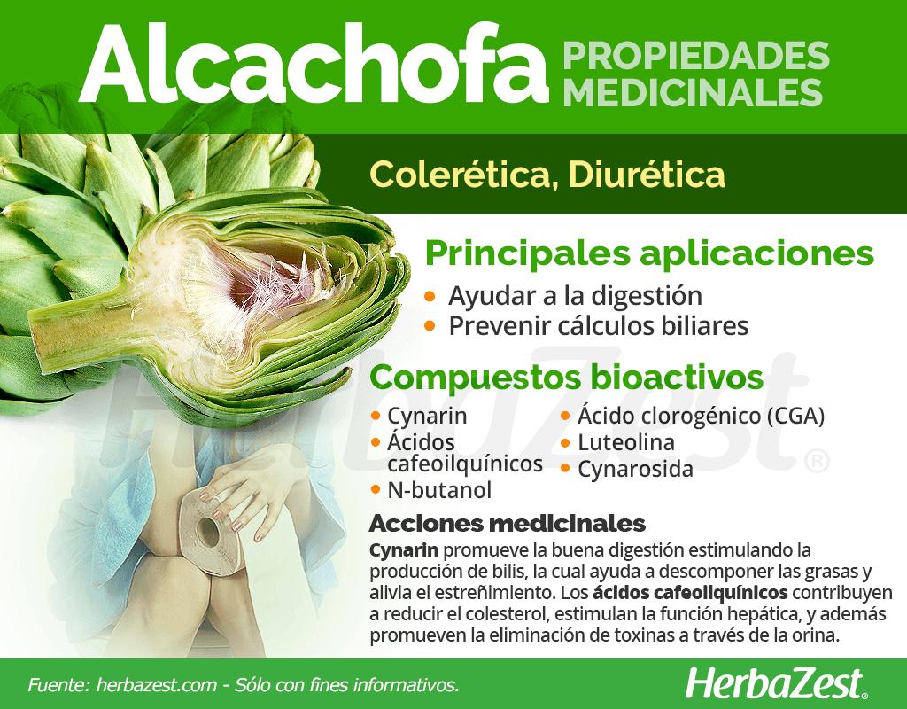 Propiedades medicinales de la alcachofa