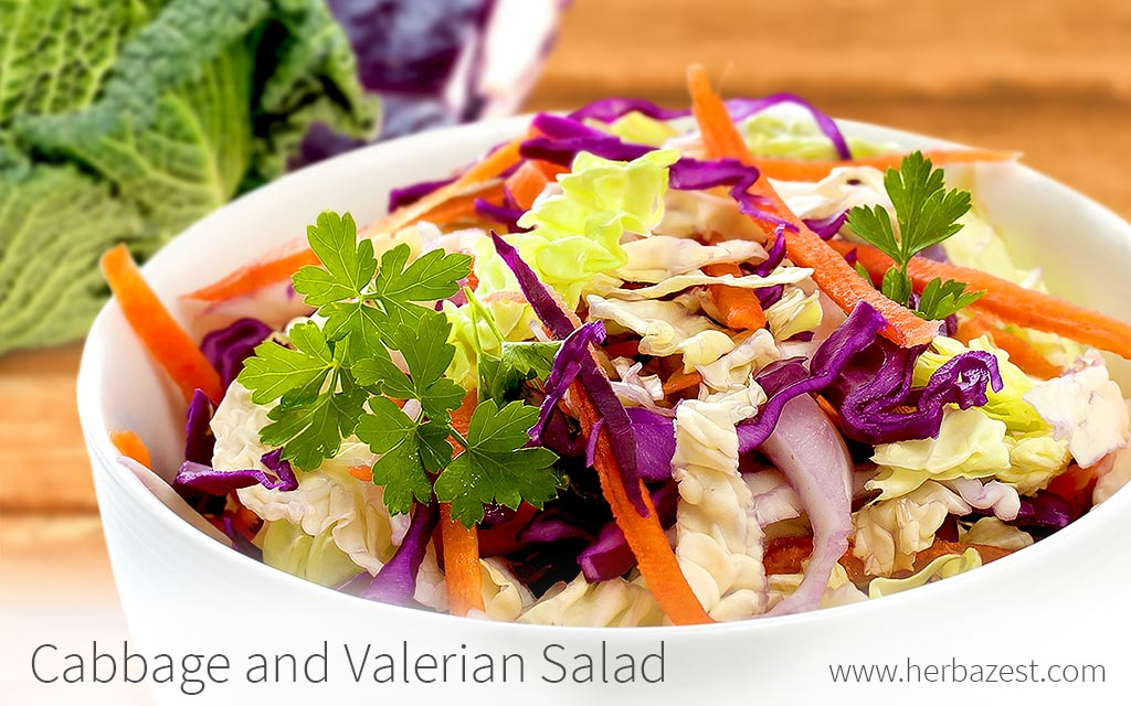 Cabbage and Valerian Salad