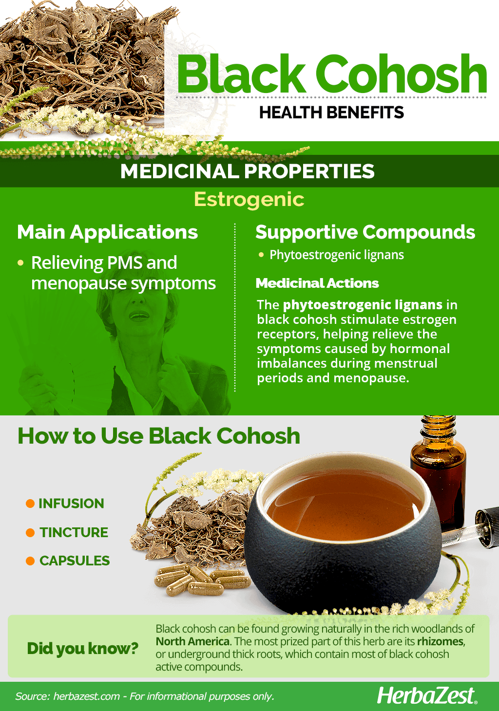 All About Black Cohosh