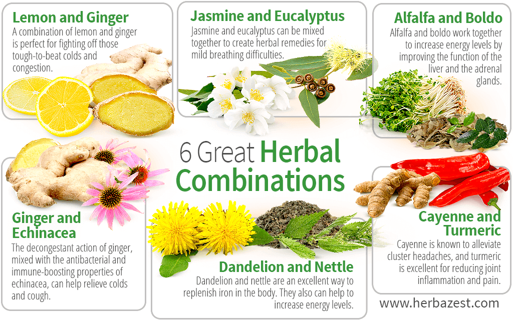 6 Great Herbal Combinations