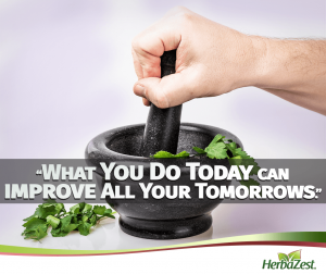 Quote: What You Do Today Can Improve All Your Tomorrows