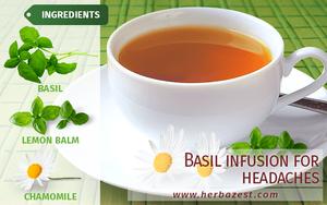 Basil Infusion for Headaches