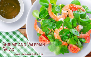 Shrimp and Valerian Salad