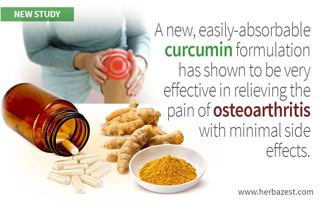 Belgium Takes the Lead in Using Turmeric Against Osteoarthritis