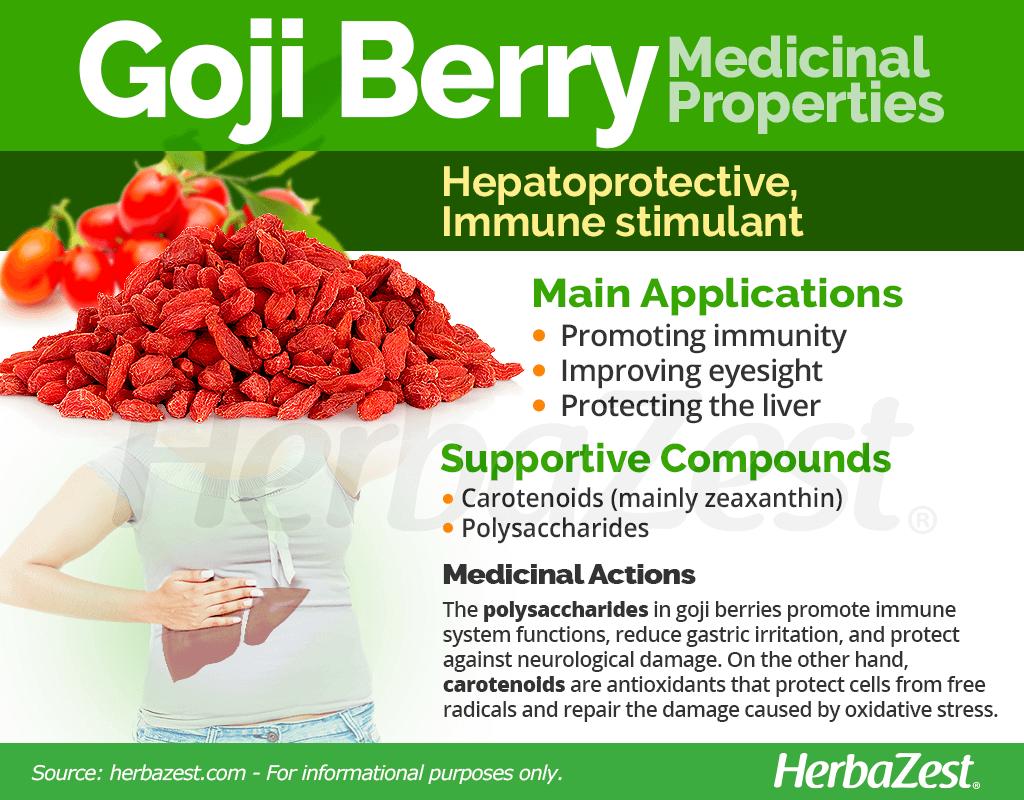 Goji Berry Medicinal Properties