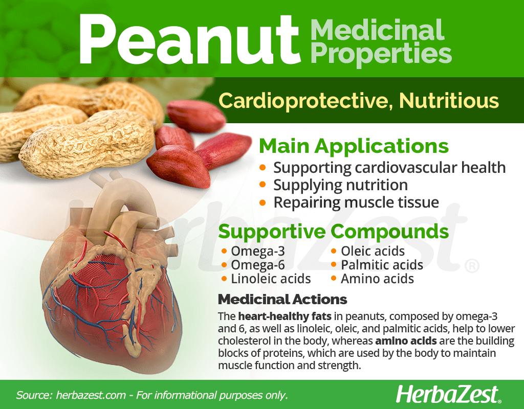 Peanut Medicinal Properties
