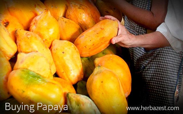 Buying Papaya