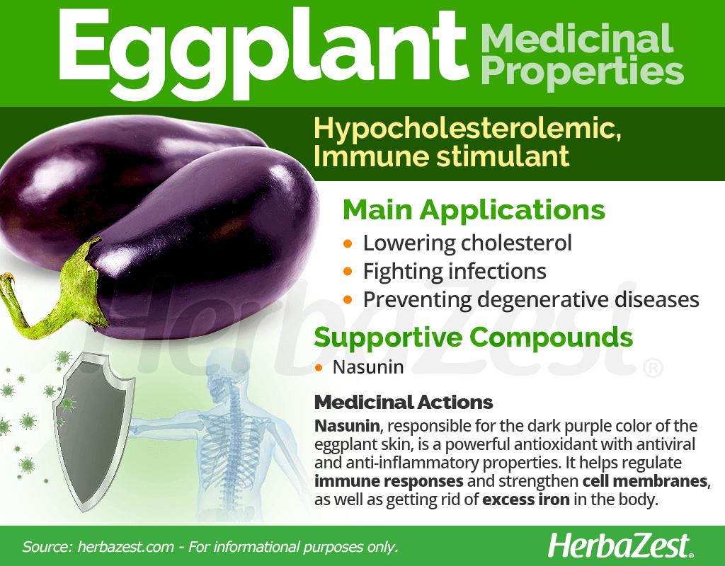 Eggplant Medicinal Properties