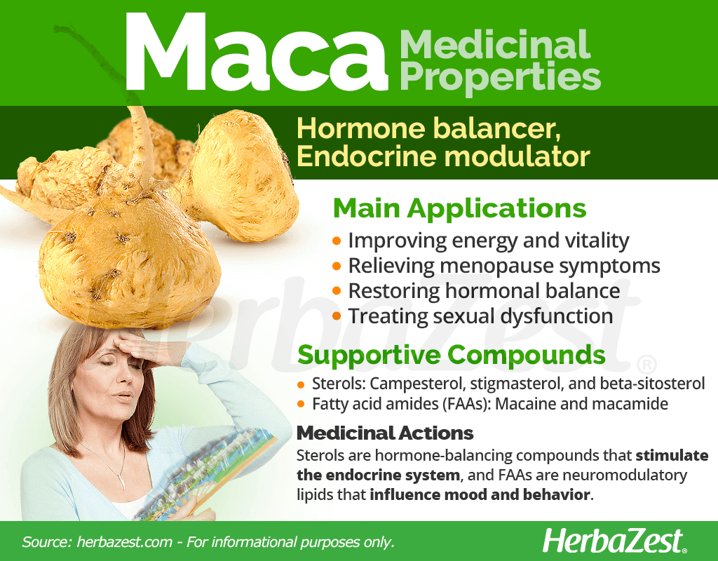Maca Medicinal Properties