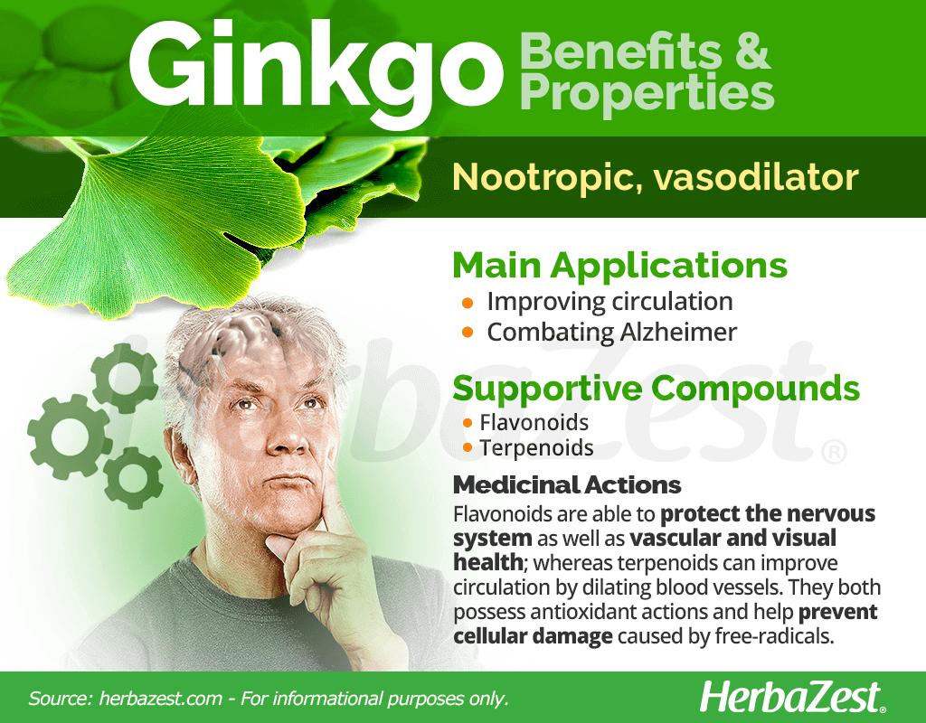 Ginkgo Benefits and Properties