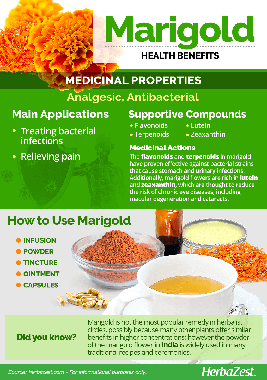 All About Marigold