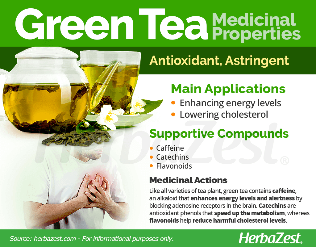 Green Tea Medicinal Properties