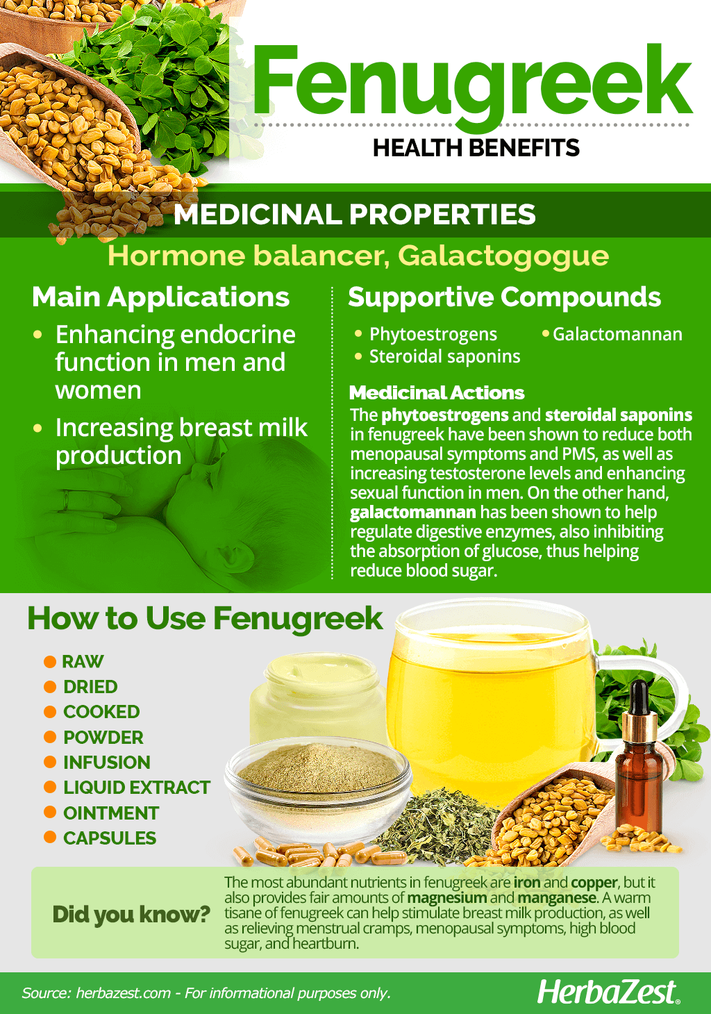 All About Fenugreek