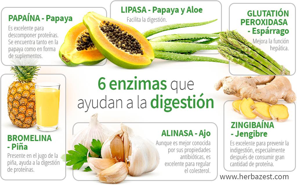 6 enzimas que ayudan a la digestión