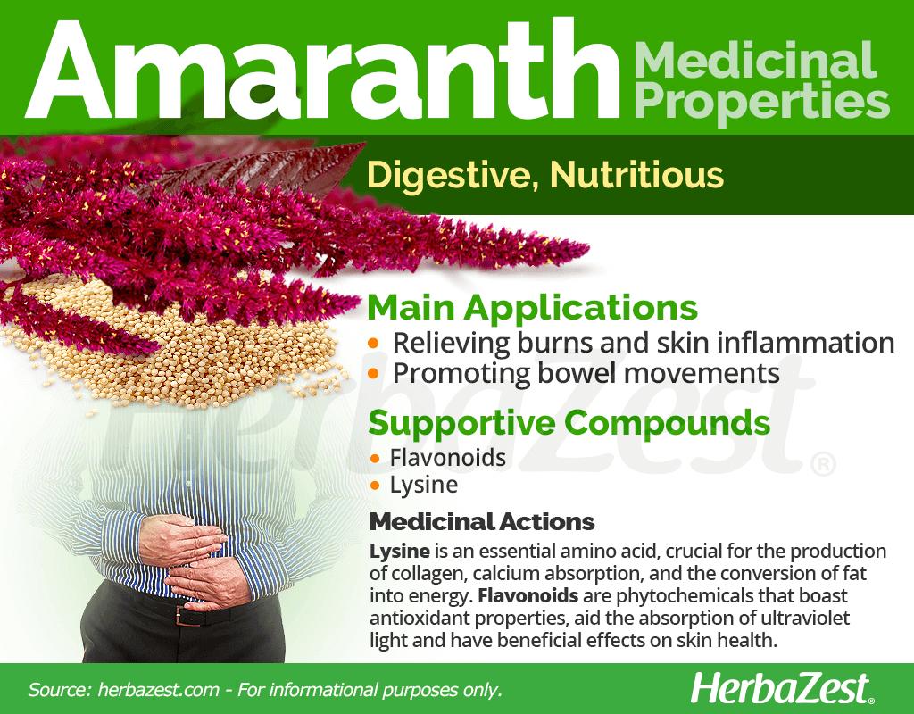 Amaranth Medicinal Properties