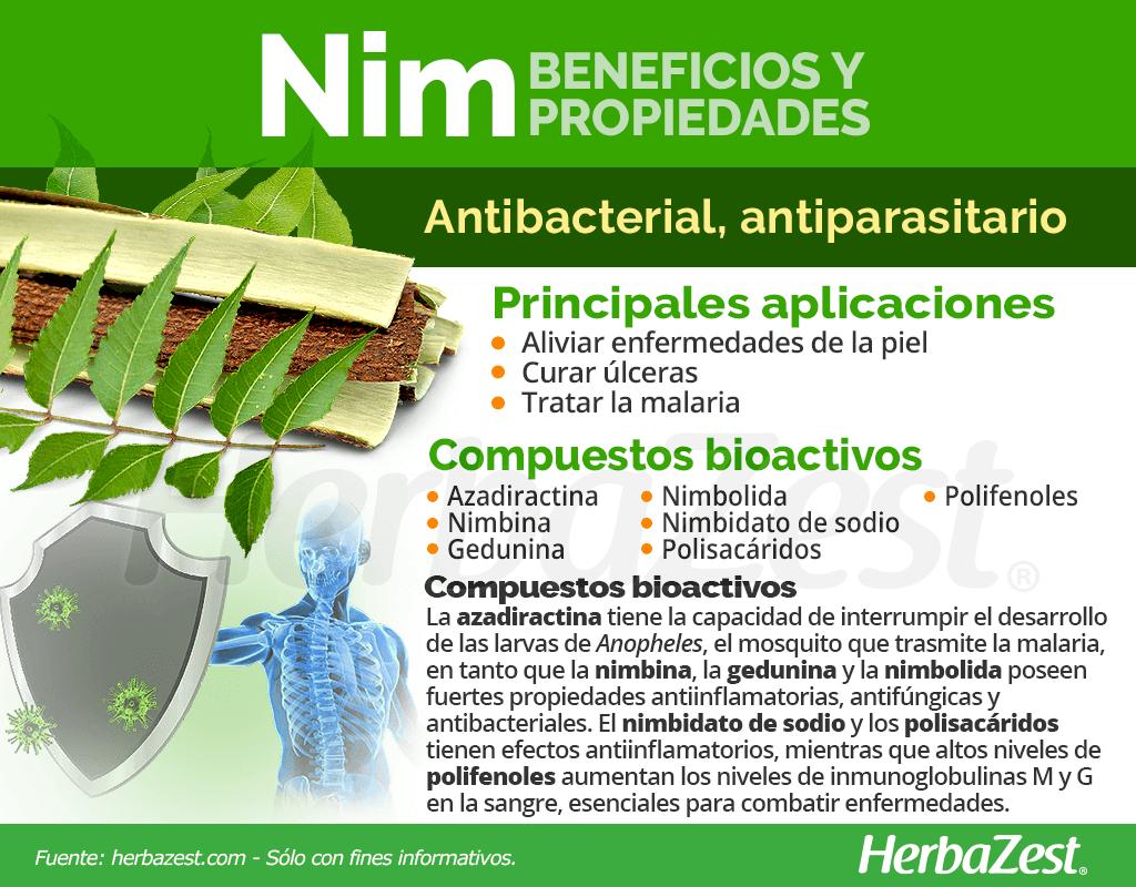 Beneficios y propiedades del nim