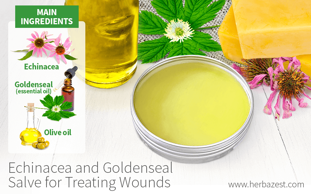 Echinacea and Goldenseal Salve for Treating Wounds
