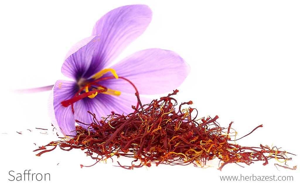 Saffron Herbazest