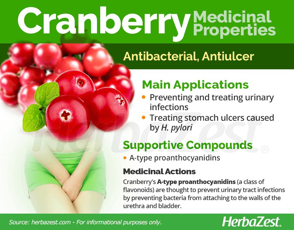 Cranberry Medicinal Properties