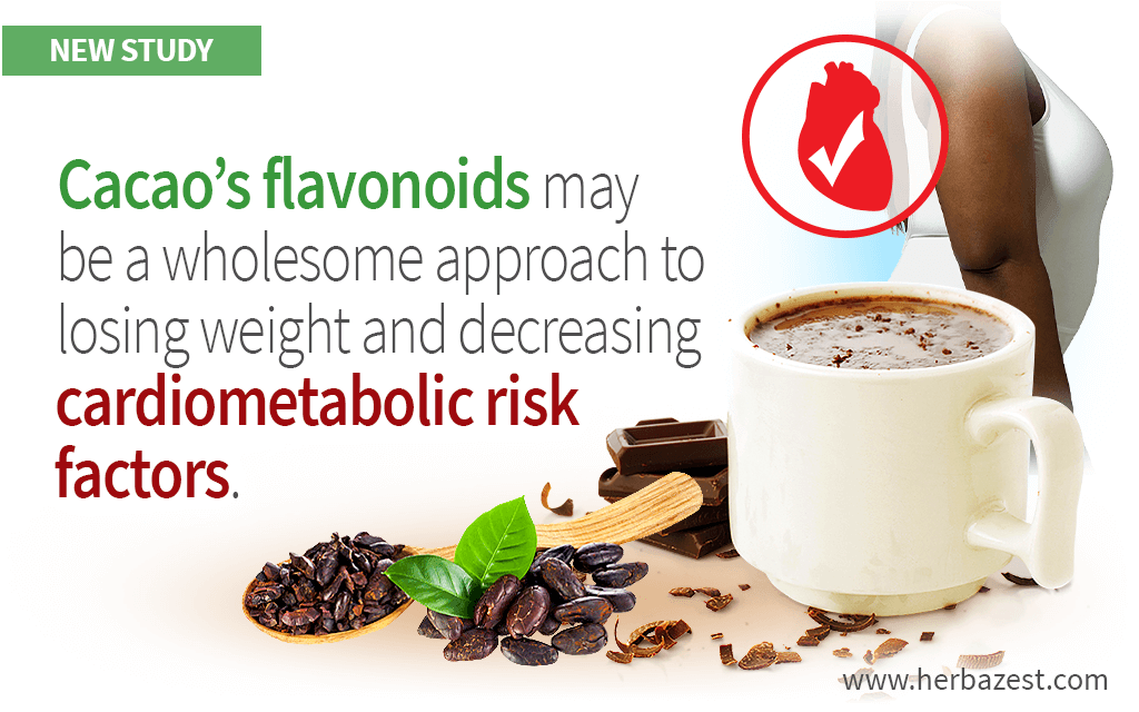 Cacao Flavonoids Reduce Various Risk Factors in Obese Adults