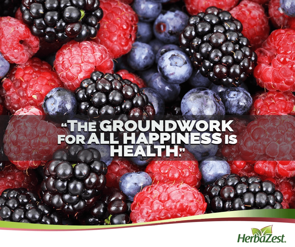 Quote: The Groundwork for all Happiness is Health