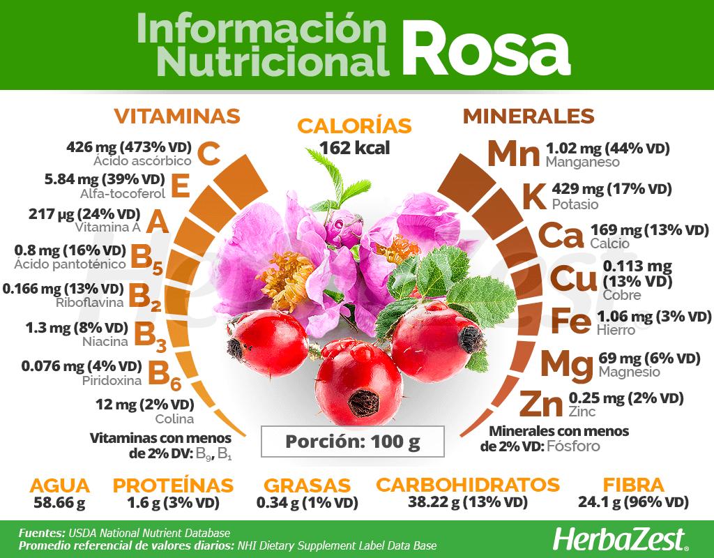 Información nutricional de la rosa canina