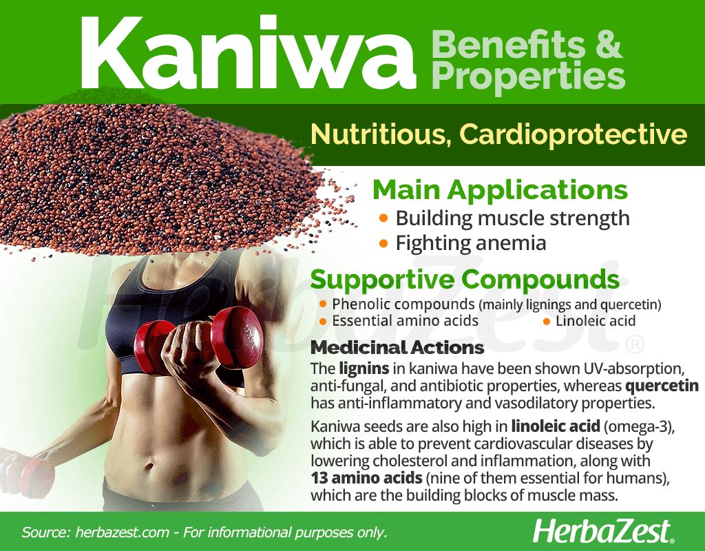 Kaniwa Benefits and Properties