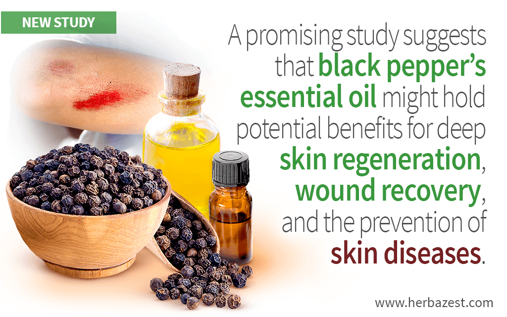 Black Pepper's Essential Oil Benefits for Skin Repair First Revealed by Study