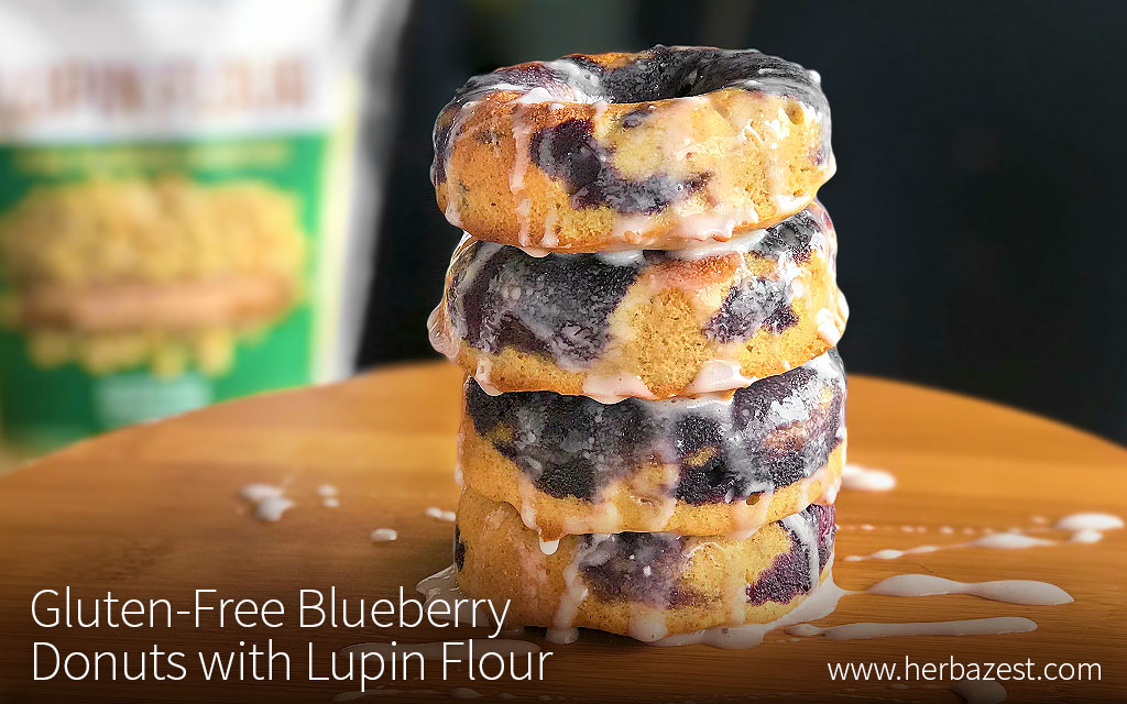 Gluten-Free Blueberry Donuts with Lupin Flour