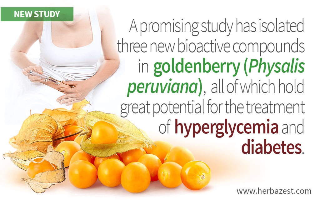 Goldenberry Hypoglycemic Compounds Identified