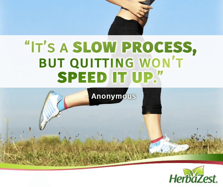 Quote: Quitting is Not the Solution