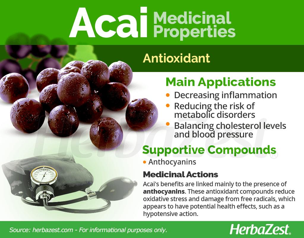 Acai Medicinal Properties