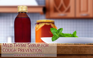 Mild Thyme Syrup for Cough Prevention