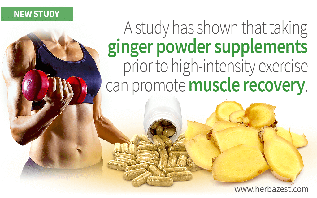 Ginger Supplementation May Speed Up Muscle Recovery Post-Exercise