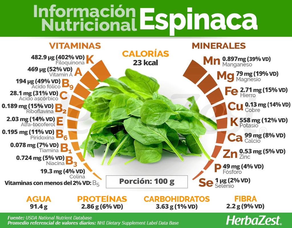 Información nutricional de la espinaca