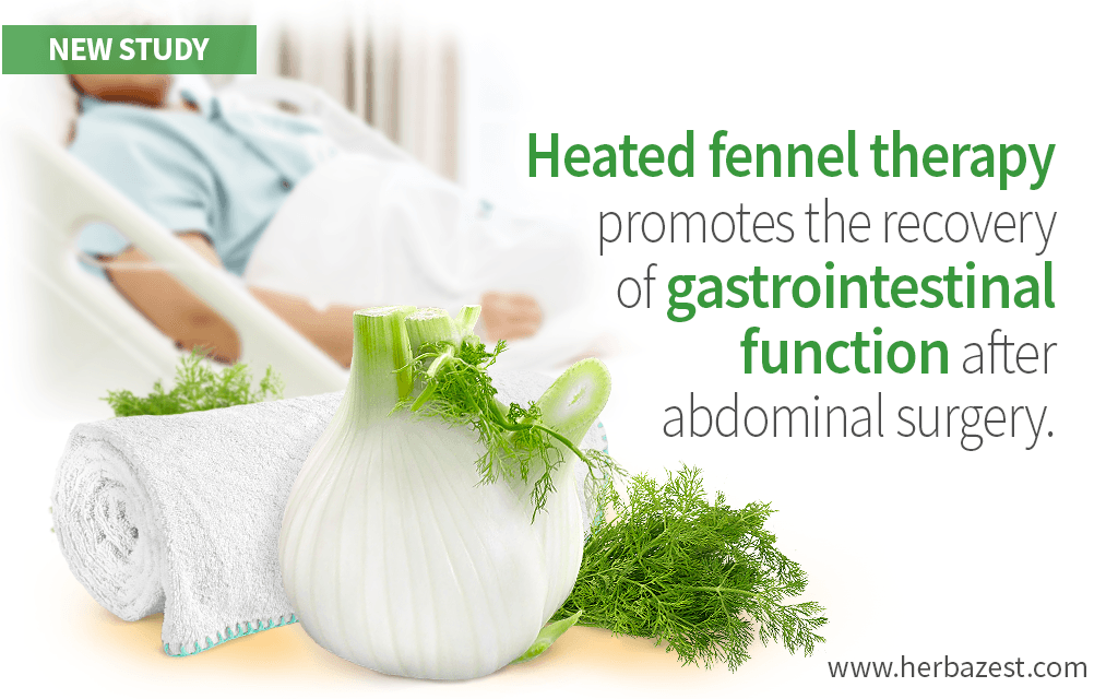 Heated Fennel Therapy Can Speed Up Recovery after Abdominal Surgery
