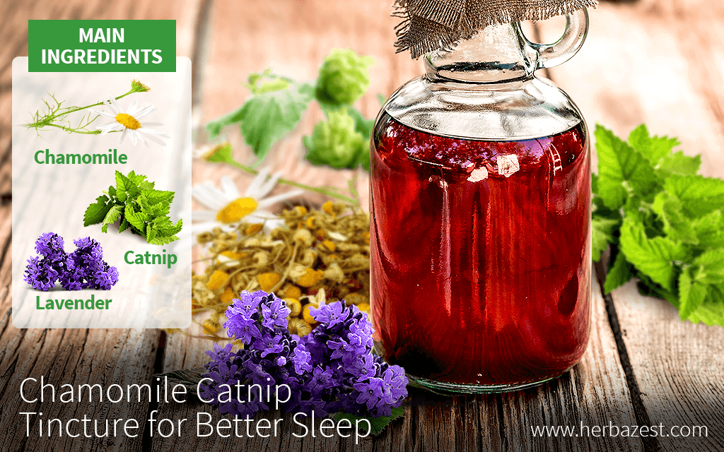 Chamomile Catnip Tincture for Better Sleep