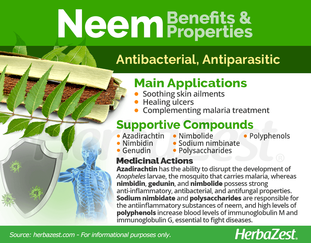 Neem Benefits and Properties