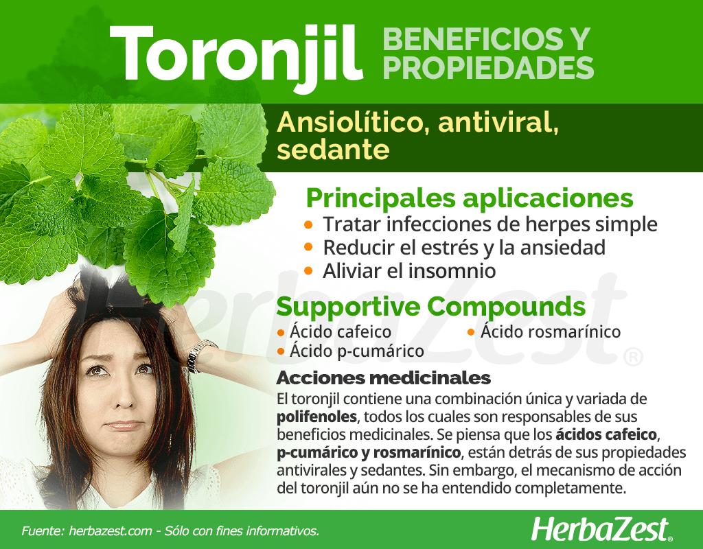 Beneficios y propiedades del toronjil