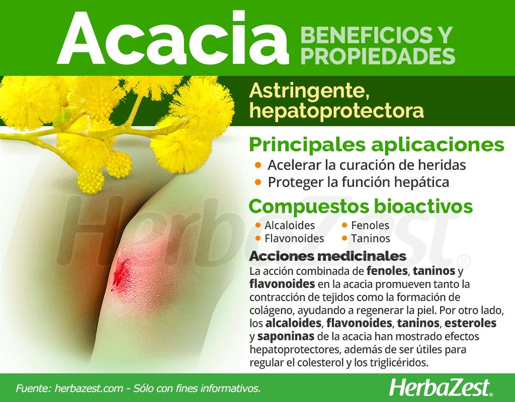 Beneficios y propiedades de la acacia