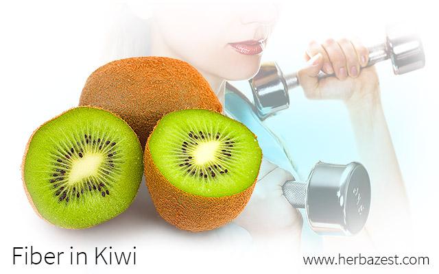 Fiber in Kiwi