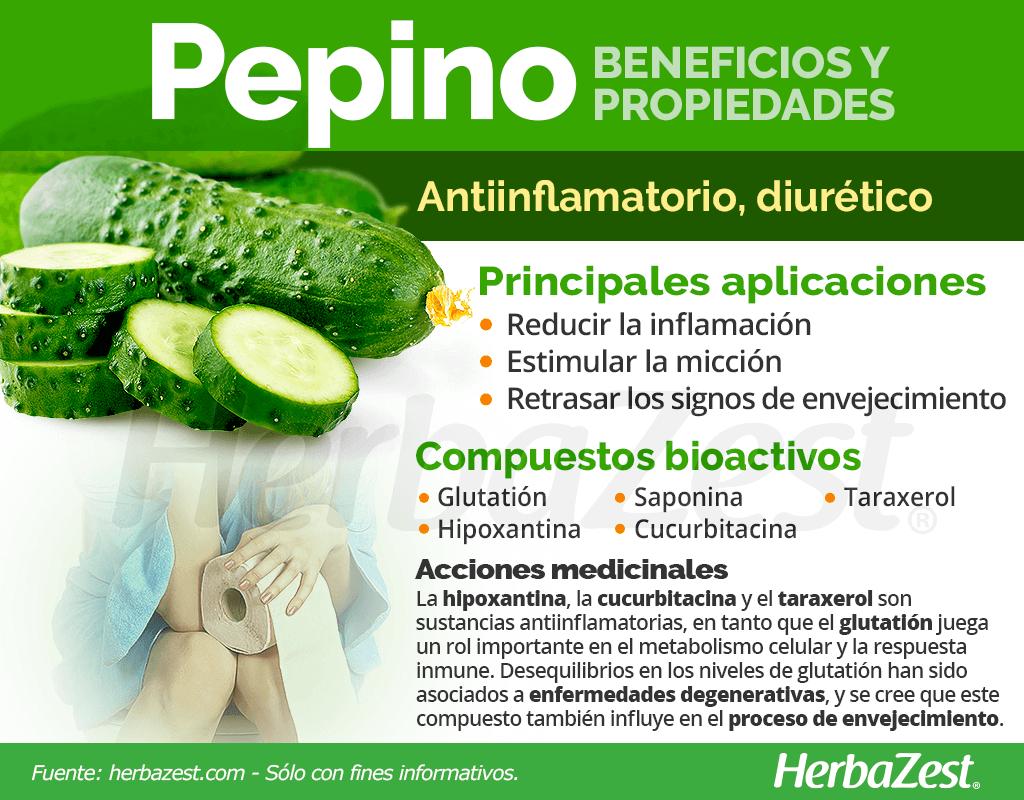 Beneficios y propiedades del pepino