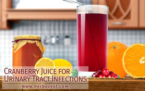 Cranberry Juice for Urinary Tract Infections
