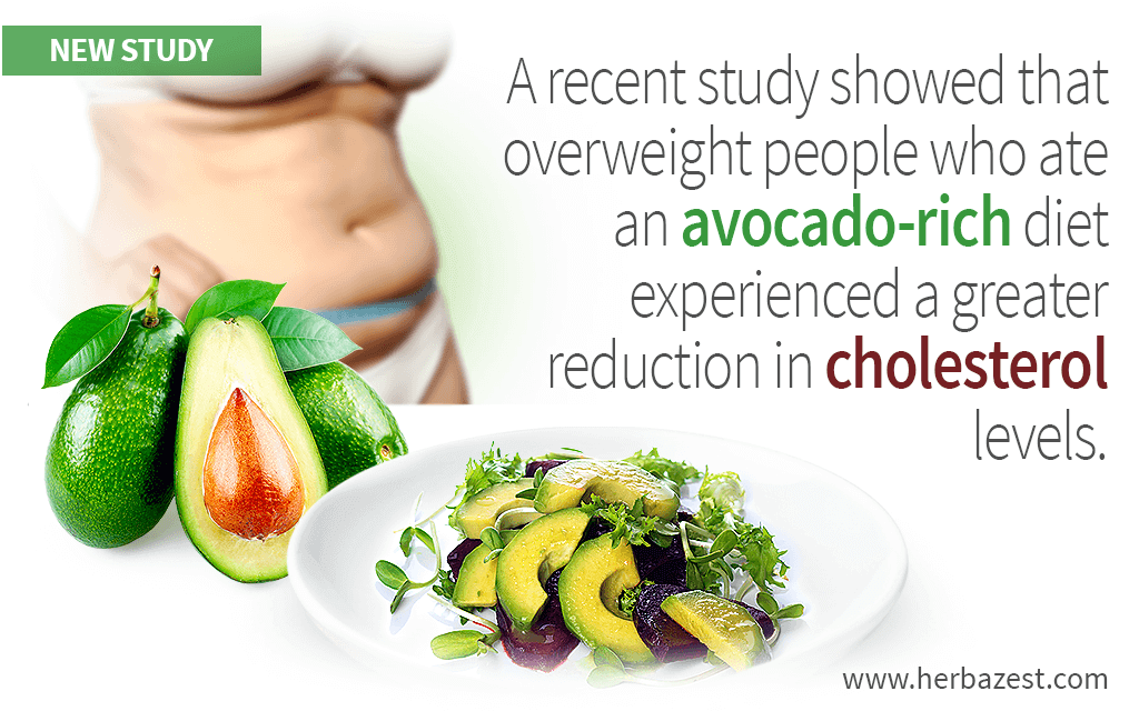 A recent study showed that overweight people who ate an avocado-rich diet experienced a greater reduction in cholesterol levels.