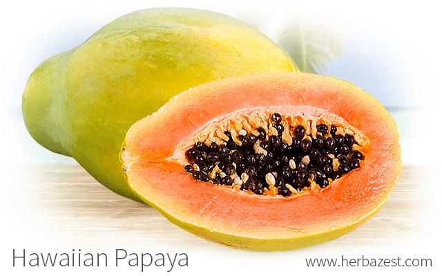 Hawaiian Papaya