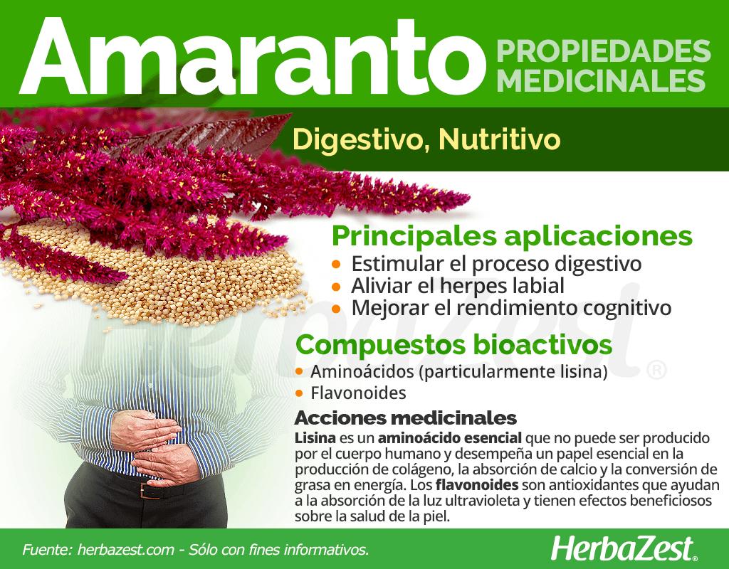 Propiedades medicinales del amaranto